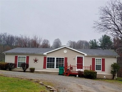 48797 Bloomfield Rd, East Liverpool, OH 43920 - #: 4053543