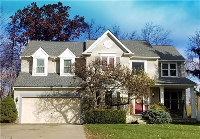 2849 Sikes Ln, Twinsburg, OH 44087 - #: 4054038