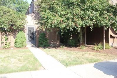 33803 Electric Blvd UNIT B13, Avon Lake, OH 44012 - #: 4054331