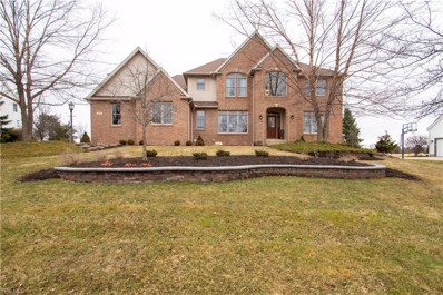 4335 Lakeview Glen Dr, Medina, OH 44256 - #: 4055411