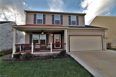 234 Chester Ave, Wadsworth, OH 44281 - #: 4055445