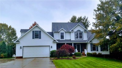 801 Hidden Valley Dr, Wadsworth, OH 44281 - #: 4056303
