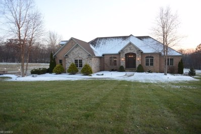 1350 Hunt Club Dr, Wooster, OH 44691 - #: 4057944