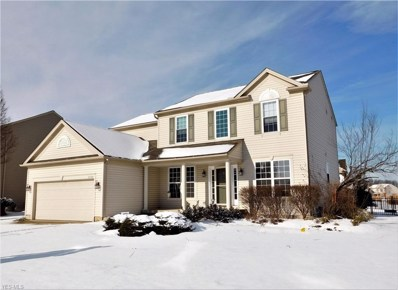 27144 Watkin Rd, Olmsted Township, OH 44138 - #: 4058689