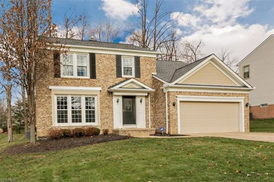 2153 White Marsh Dr, Twinsburg, OH 44087 - #: 4059331