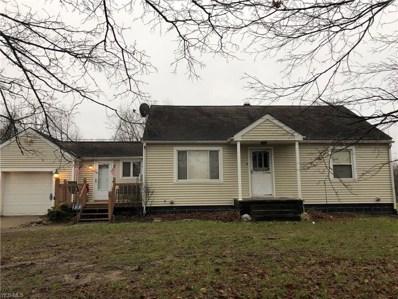10571 Hopkins Rd, Garrettsville, OH 44231 - #: 4059752
