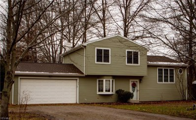 24 Leffingwell Dr, Orwell, OH 44076 - #: 4059856