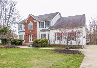 10076 Brookfield Dr, Mentor, OH 44060 - #: 4059981