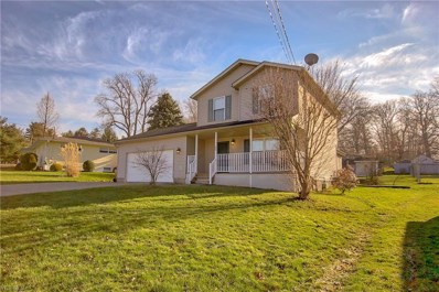 20 E Wellock Dr, Akron, OH 44319 - #: 4060156