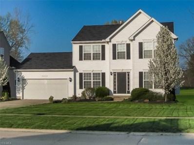 4629 Oak Point Rd, Lorain, OH 44053 - #: 4060251