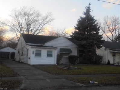 4082 W 143rd St, Cleveland, OH 44135 - #: 4060605