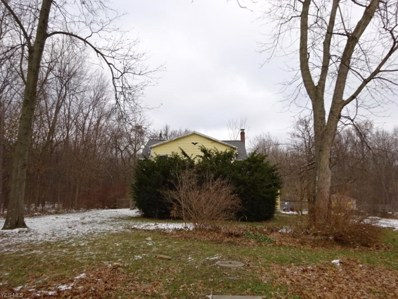 27038 Bagley Rd, Olmsted Township, OH 44138 - #: 4060876