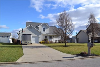 10505 Carousel Woods Dr, New Middletown, OH 44442 - #: 4061610