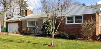 1010 Briarcliff Ave, Alliance, OH 44601 - #: 4062034