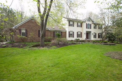 7455 Hermitage Rd, Concord, OH 44077 - #: 4062472