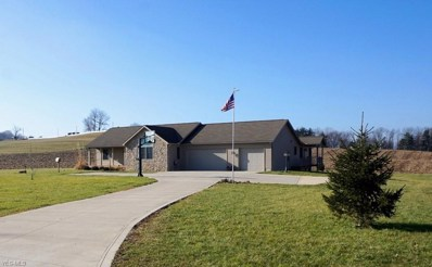6649 Township Road 466, Lakeville, OH 44638 - #: 4063024