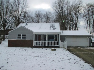 3521 S Wendover Cir, Youngstown, OH 44511 - #: 4063028