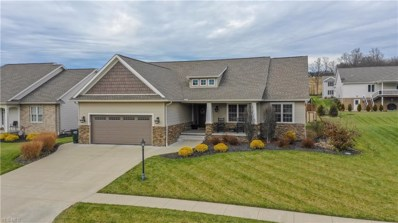 5158 Falcon Dr, Millersburg, OH 44654 - #: 4063374