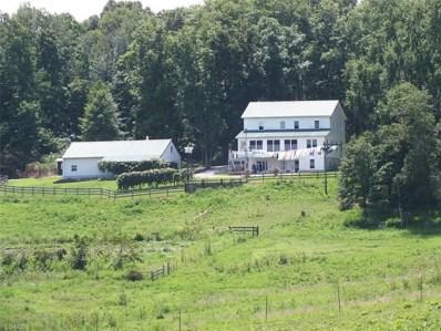 1606 Dan T Davis Rd, Oak Hill, OH 45656 - #: 4063770
