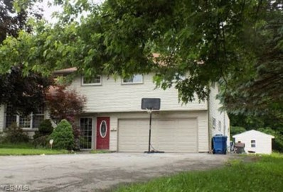 20 Henry Dr, Struthers, OH 44471 - #: 4066858