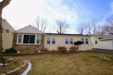 5662 Hickory St, Mentor-on-the-Lake, OH 44060 - #: 4073132