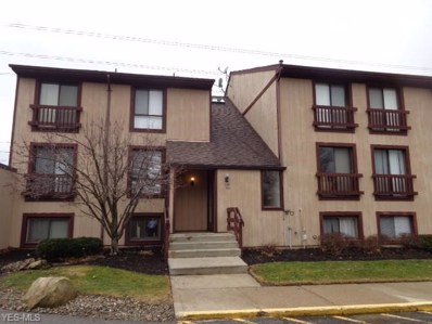 1145 Canyon View Rd UNIT 103, Northfield, OH 44067 - #: 4076219