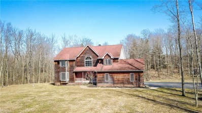 7415 Callow Rd, Leroy, OH 44077 - #: 4081978