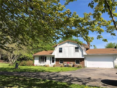 6701 River Road, Madison, OH 44057 - #: 4082556