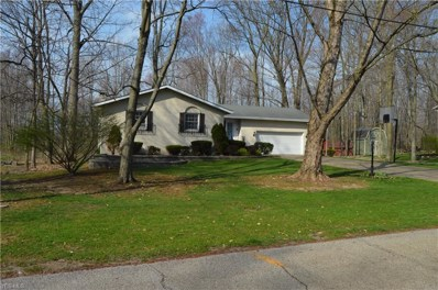 419 Whittlesey Dr, Tallmadge, OH 44278 - #: 4088527