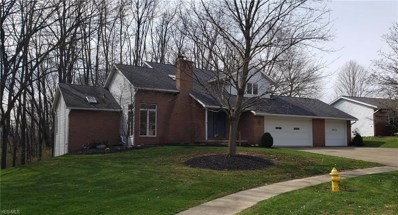 1189 Hedgecliff Dr, Wooster, OH 44691 - #: 4089066