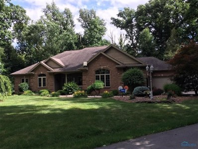 4938 State Route 111 Road, Antwerp, OH 45813 - #: 6028790