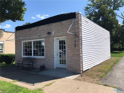215 Railway Avenue, Holgate, OH 43527 - #: 6029917