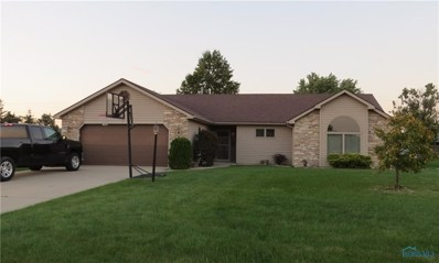 705 Country View Drive, Paulding, OH 45879 - #: 6031854