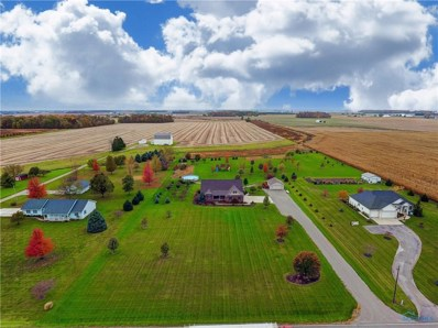 5445 County Road 19, Wauseon, OH 43567 - #: 6032771