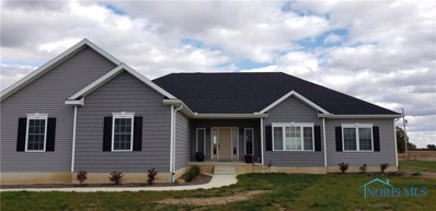 12663 County Hwy. 215, Forest, OH 45843 - #: 6050229