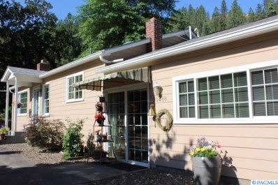 20488 Big Canyon Road, Other, ID 83545 - #: 231778