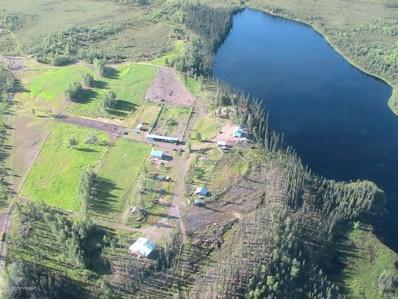 L1-2 Eden Lake, Manley Hot Springs, AK 99756 - #: 17-11268