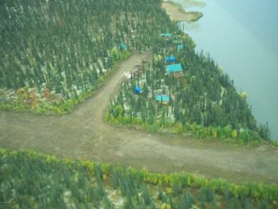 Remote Lake Front, Sleetmute, AK 99668 - #: 19-11525