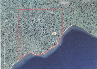 L3 Ott Bay Upper Lake Nerka, Aleknagik, AK 99576 - #: 19-9389
