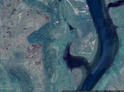 Naknek River, King Salmon, AK 99613 - #: 20-12743