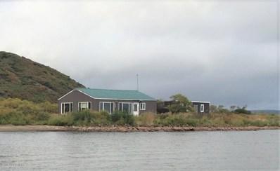 N L1 Paradise Cove, Pilot Point, AK 99649 - #: 21-1220