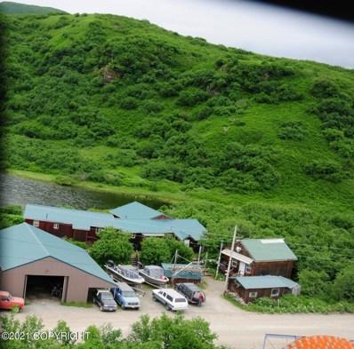145 Anderson, Chignik Bay, AK 99564 - #: 21-4626