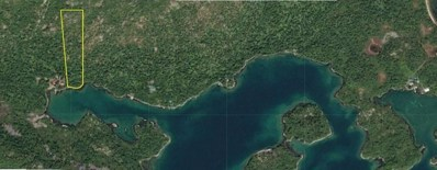 Lt 3 Barney\'s Bay (No Road), Pedro Bay, AK 99647 - #: 21-7024