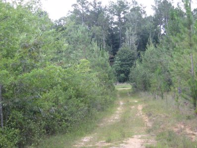 County Road 8, Deer Park, AL 36529 - #: 255008