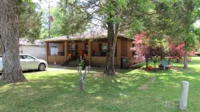 19380 E Shepard Lake Rd, Mount Vernon, AL 36560 - #: 269516