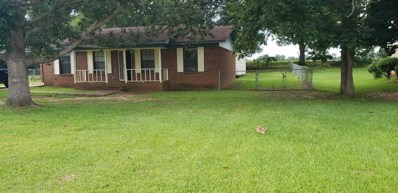 51 Ridge Road, Monroeville, AL 36460 - #: 272620