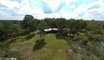 20850 River Road, Robertsdale, AL 36567 - #: 281751