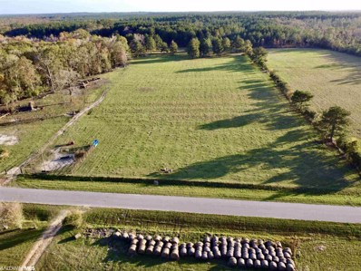 Country Road, Fruitdale, AL 36539 - #: 307102