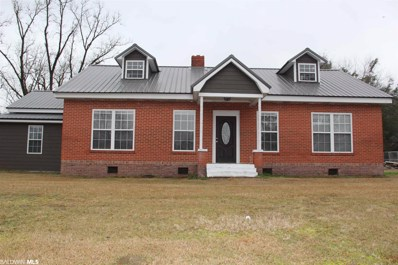 811 Old Peterman Hwy, Peterman, AL 36471 - #: 311114