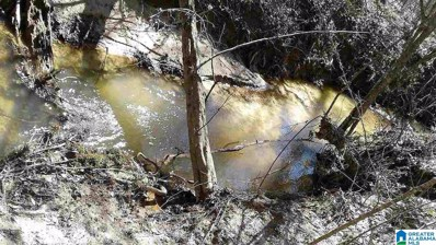 County Road 16 Unit 320 Acr>, Sweet Water, AL 36782 - #: 1283710